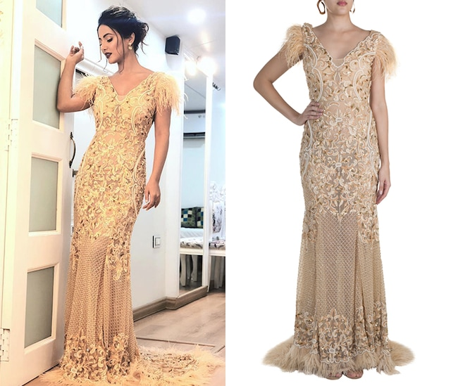 Nude Embroidered & Feathered Gown by RS by Rippii Sethi