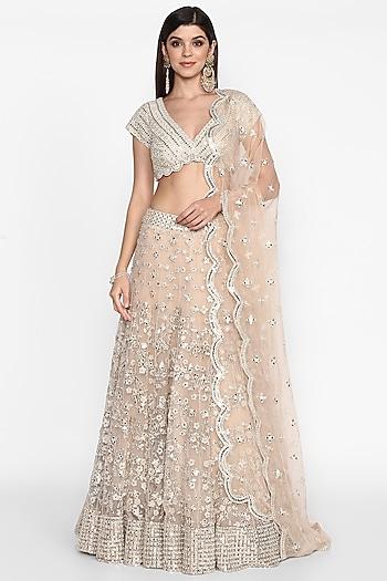 Blush Pink Embroidered Lehenga set by Abhinav Mishra