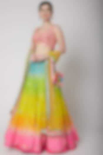 Multi Colored Embroidered Lehenga Set by Avnni Kapur