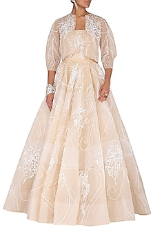 Beige Embroidered Ball Gown by AGT By Amit GT