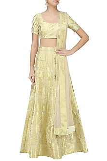 Gold Banarasi Embroidered Lehenga Set by Amaira