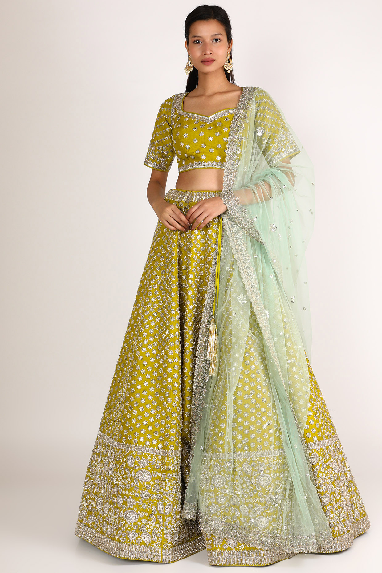 Mehendi Green Embroidered Lehenga Set by Anushree Reddy