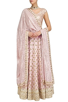 Blush Pink Floral Jaal Embroidered Lehenga Set by Anushka Khanna