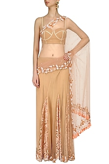 Peach Embroidered Kalis and Tassel Saree by Archana Rao