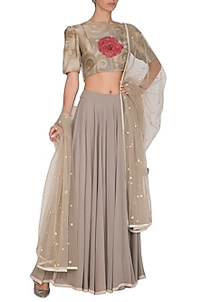 Grey Hand Painted & Embroidered Floral Lehenga set by Baavli