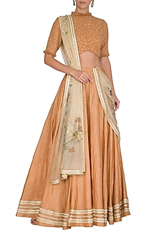 Sand Brown Hand Painted & Embroidered Lehenga Set by Baavli