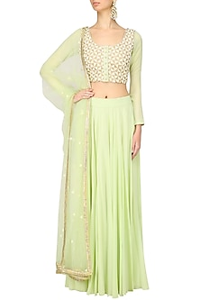 Mint Green Zari and Pearl Embroidered Blouse and Skirt Set by Baavli
