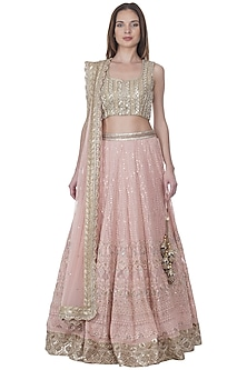 Blush Pink Lucknowi Embroidered Lehenga Set by Bhumika Grover