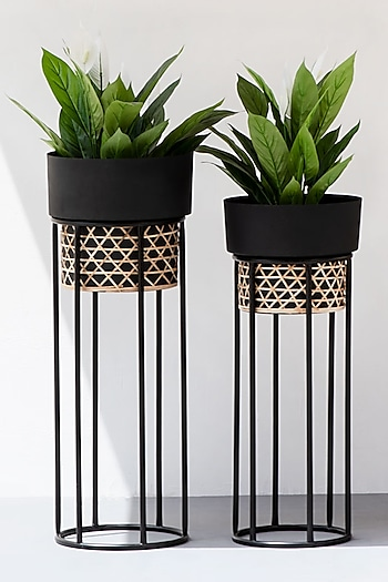 Black Textured Iron Cane Planter 