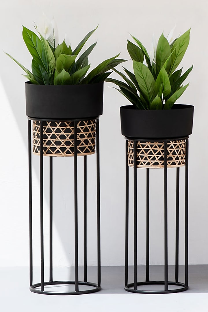 Black Textured Iron Cane Planter  (Set of 2) by The Decor Remedy