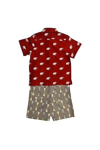 Red & Grey Printed Shirt Set by Charkhee Kids