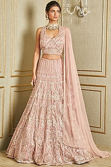 Blush Pink Hand Embroidered Lehenga Set by Charu & Vasundhara