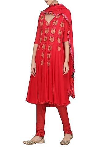 Rose Red Embroidered and Printed Anarkali Set by Chandni Sahi