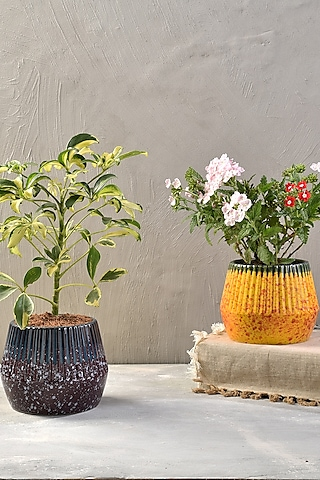 Purple Ceramic Desk Planter by The 7 Dekor