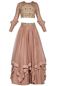 Almond Embroidered Layered Lehenga Set by Dheeru and Nitika