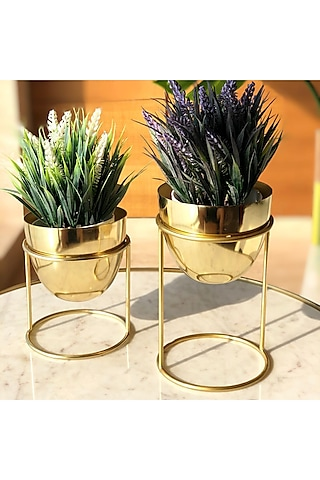Gold Botanical Planters (Set of 2) by Mason Home