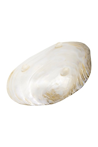Silver Oyster Shell Showpiece by THOA