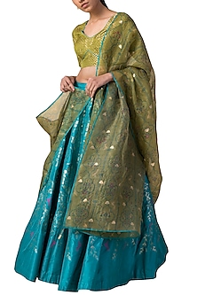 Blue & Green Printed Handwoven Lehenga Set by Ekaya