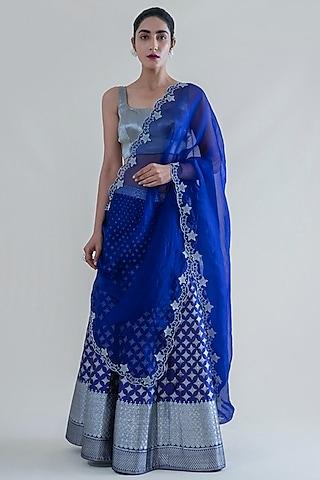 Indigo Blue Banarasi Lehenga With Dupatta by Ekaya
