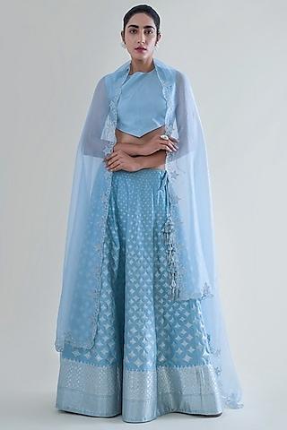 Sky Blue Banarasi Lehenga With Dupatta by Ekaya