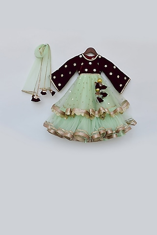 Pista Green Embellished Anarkali Set by Fayon Kids