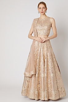 Champagne Embroidered Lehenga Set by Jiya by Veer Designs
