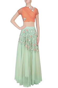 Peach 3D Floral Applique Work Crop Top with Mint Green Skirt by K-ANSHIKA Jaipur