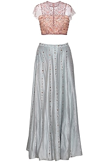 Steel Grey Embroidered Crop Top with Lehenga Skirt by Kudi Pataka Designs