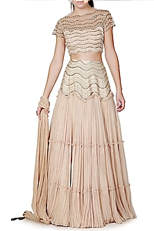 Gold Embroidered Lehenga Set by Limerick By Abirr N' Nanki