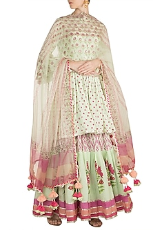 Mint Green Sharara Set by Maayera Jaipur