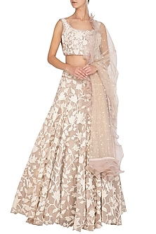 Beige Embroidered Lehenga Set by Mishru