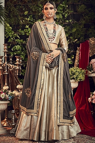 Champagne Silver & Grey Embroidered Lehenga Set by Ranian