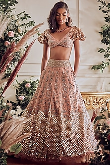 Blush Embroidered Lehenga Set by Not So Serious By Pallavi Mohan