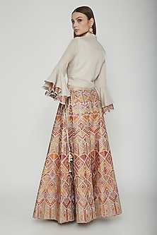 Multi Colored Embroidered Skirt With Crop Top by Nysa & Shubhangi