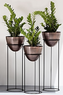 Egg Shaped Copper & Black Iron Planter (Set of 3) by The Decor Remedy