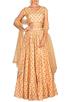 Nude Embroidered Printed Lehenga Set by Paulmi & Harsh