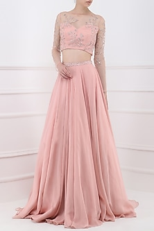 Deep Rose Sheer Embroidered Crop Top with Lehenga Skirt by Pooja Peshoria