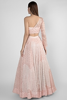 Peach Pink Embroidered Skirt With Crop Top by Pink Peacock Couture