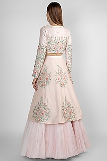 Peach Pink Panelled Lehenga Skirt With Crop Top by Pink Peacock Couture