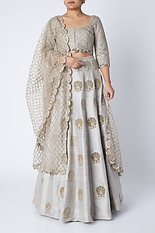 Powder Blue Embroidered Lehenga Choli Set by Payal Singhal