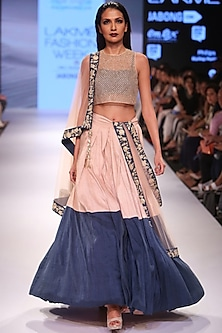 Blush embroidered blouse with blush and navy silk lehenga set by Payal Singhal