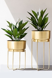 Handmade Champagne Gold Iron Planter (Set of 2) by The Decor Remedy