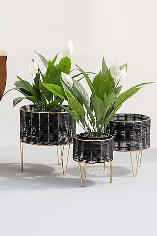 Black & Gold Textures Planters (Set of 3) by The Decor Remedy