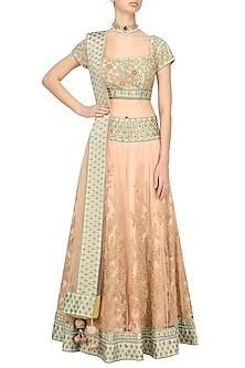 Pale Pink and Pastel Green Threadwork Lehenga Set by Ridhi Arora