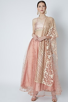 Blush Pink Embroidered Lehenga Set by Rishi & Vibhuti-POPULAR PRODUCTS AT STORE