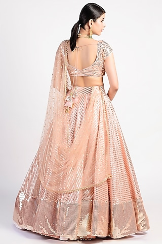 Blush Pink Embroidered Lehenga Set by Rishi & Vibhuti