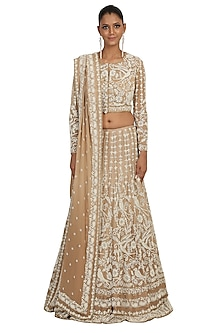 Golden Shaded Embroidered Lehenga Set by Rabani & Rakha