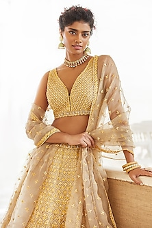 Cinnamon Pearls Embroidered Lehenga Set by Seema Gujral