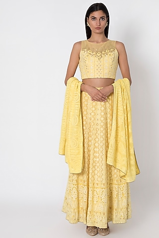Lemon Yellow Embroidered Lucknowi Lehenga Skirt by Sole Affair