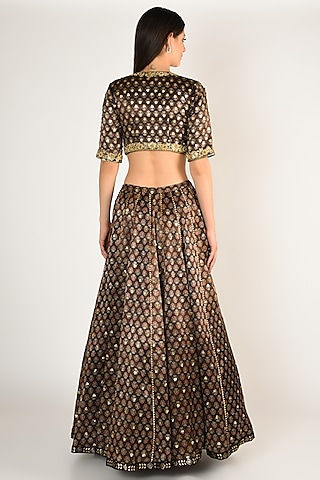 Brown Hand Embroidered & Printed Lehenga Set by Salian By Anushree